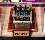 japanese purple fragment
